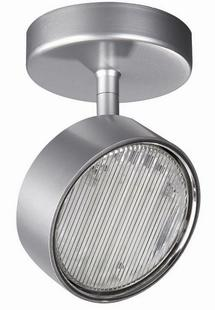 -Roomstylers-FCG301 nickel ceiling(Discontinue)