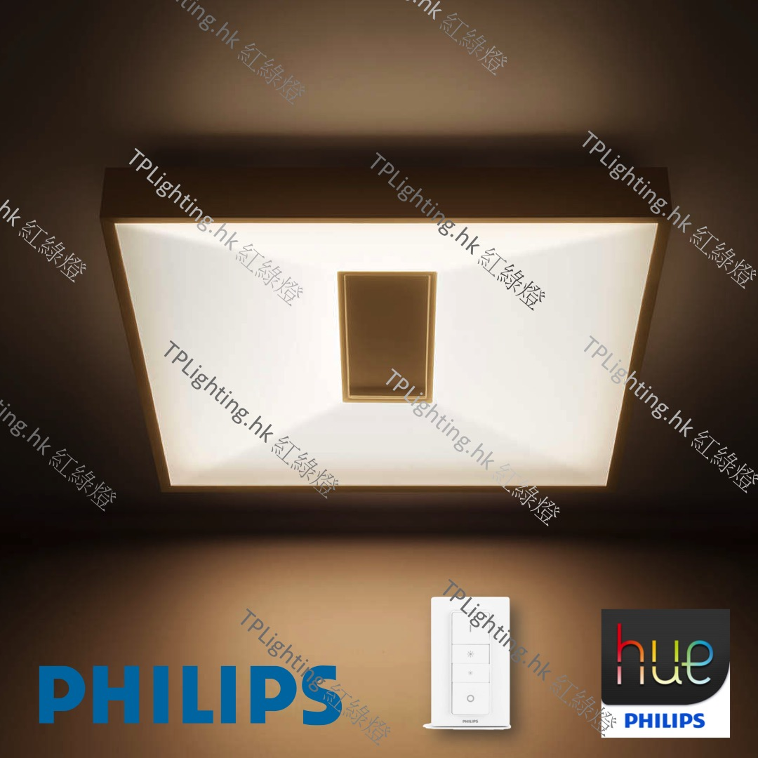 Philips Hue Cher 45055